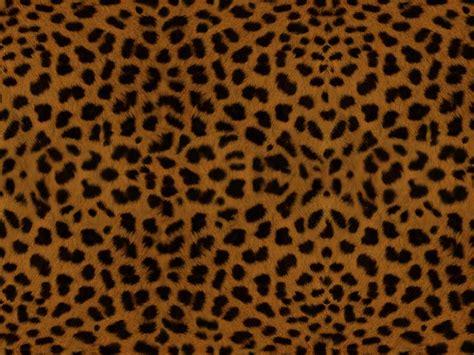 leopard print wallpaper for bedroom leopard print wallpaper for bedroom hd desktop