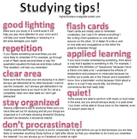 organization tips for college students studying tips for high school students students studying
