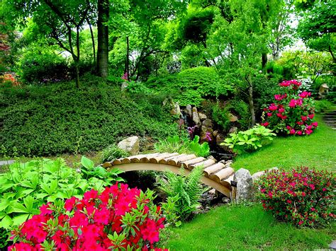 images of beautiful flower gardens nature flowers wallpapers for desktop wallpaper
