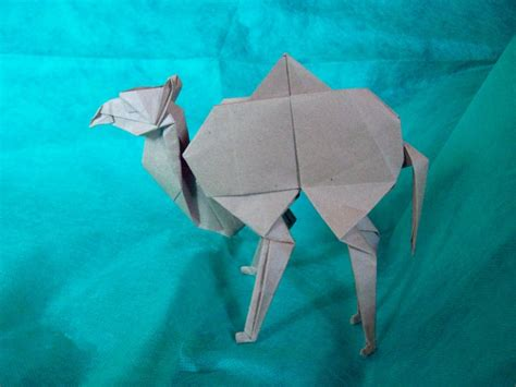 origami camel 53 best images about origami on origami birds