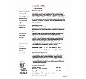 management resume best sample resume - Sample Access Management Resume