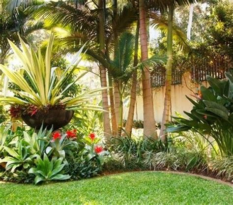 tropical landscaping ideas tropical landscaping ideas southern california