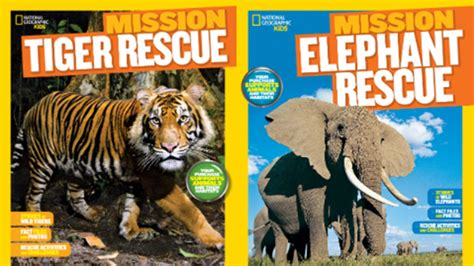 picture books about animals mission animal rescue books