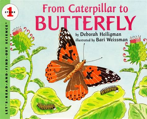 butterfly picture books from caterpillar to butterfly by deborah heiligman