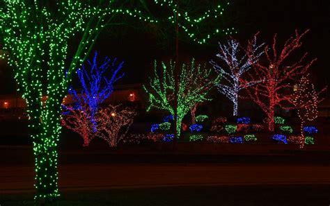 wrapping trees with lights lighting wholesaler lowa kanas omaha nebraska