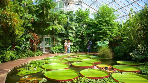 botanic gardens edinburgh royal botanic garden edinburgh scotland attraction
