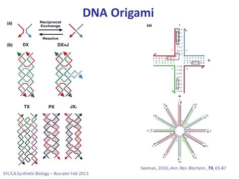 dna origami nature omics discussion in nature ppt