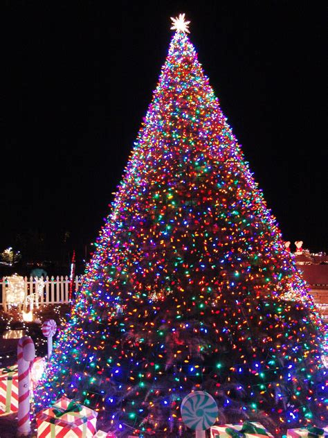 how to tree lights 11 awesome and dazzling tree lights ideas