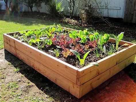 diy vegetable garden boxes at home at home diy raised bed vegetable garden