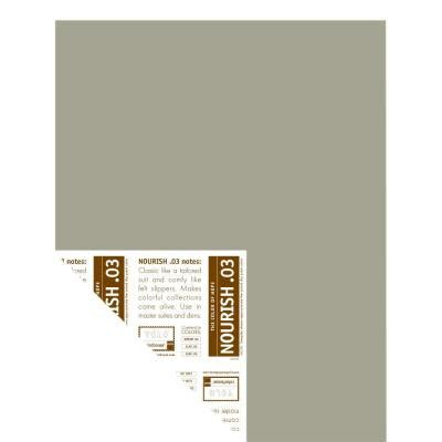home depot yolo paint yolo colorhouse 12 in x 16 in nourish 03 pre painted
