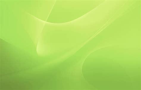 light green color light green color wallpaper