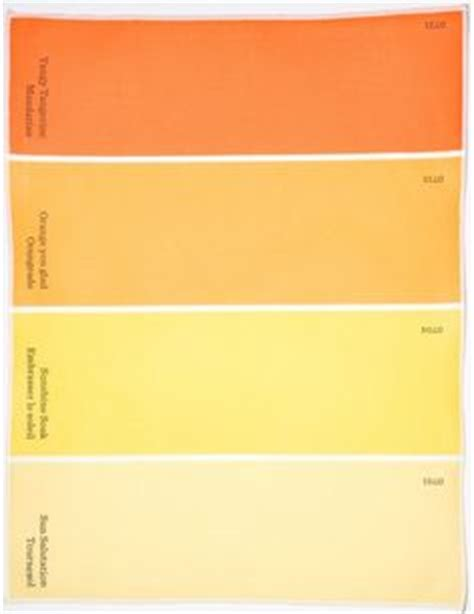 behr paint colors tangerine behr behr paint and color swatches on