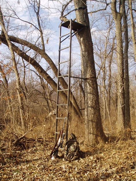 the best tree stand tree stand is generally the best option