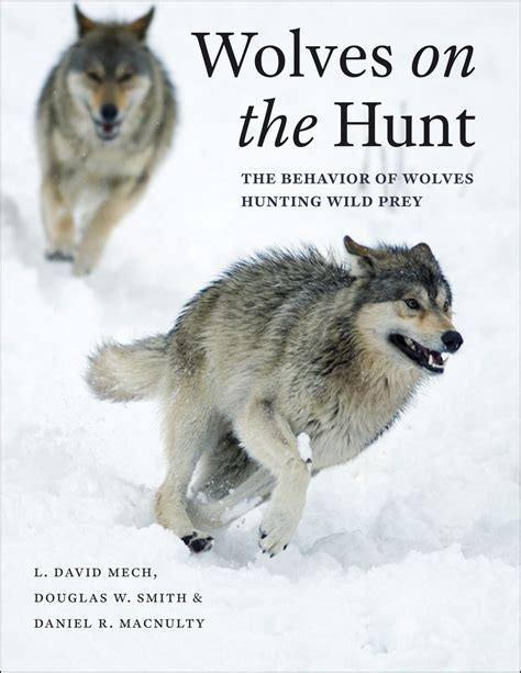 wolves picture book wolves on the hunt the behavior of wolves