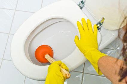 d 233 boucher ses wc avec un furet comment faire de a 224 z