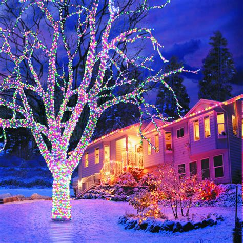 how to decorate a tree outside with lights how to decorate a tree outside with lights