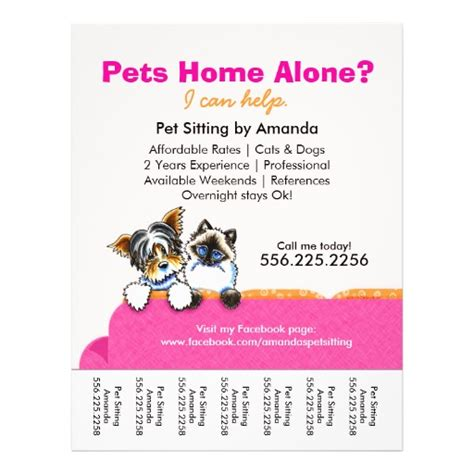 pet sitter ad yorkie cat couch pink tear sheet flyers