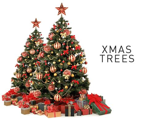 decorations buy buy trees decoration and lights