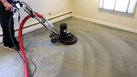 Carpet Ckeaner by Carpet Cleaning Ajax Rug Cleaning Ajax Free Advice