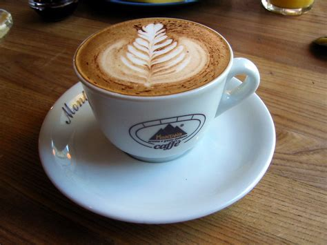 10 Facts You Don't Know About Cappuccino   Ready Set Trek