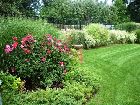 grass garden ideas ornamental grass gardens ideas www imgkid the