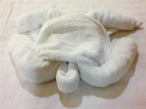 towel origami animals 72 best images about towel animals on