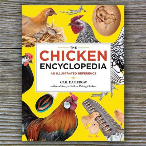 chicken picture book the chicken encyclopedia book by gail damerow farmcurious