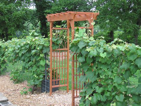 Garden Arbor Plans Diy Garden Arbors Free Pdf Woodworking Diy Garden