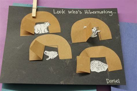 hibernation crafts for image gallery hibernating animals crafts