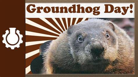 groundhog day plot groundhog day webcams web cameras and webcams