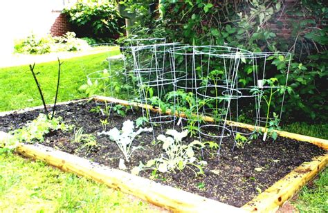 simple vegetable garden ideas simple vegetable garden ideas for beginners homelk