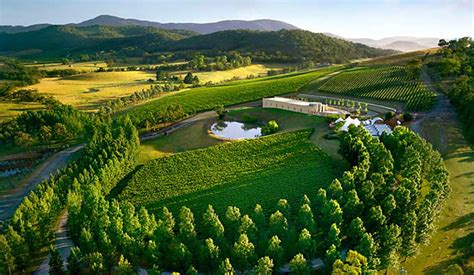 yarra valley best destinations places to visit in australia great