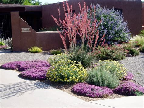 water wise landscaping waterwise landscapes southwestern landscape