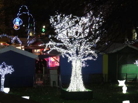 tree wrapped in lights tree wrapped in lights graham miln