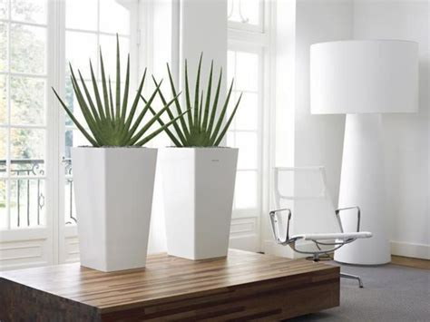 modern plants indoor indoor plant hire melbourne design bookmark 12023