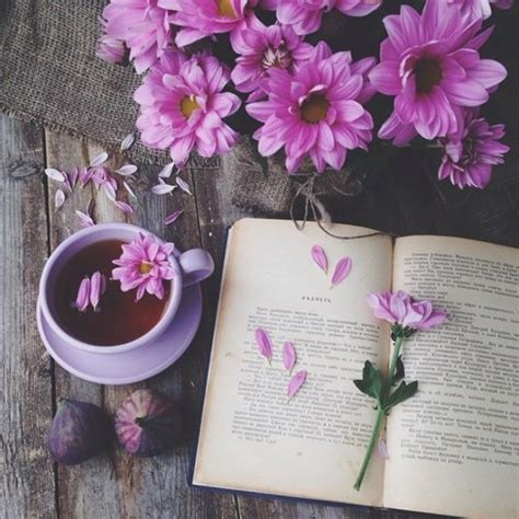 flower picture book photography beautiful hippie boho book