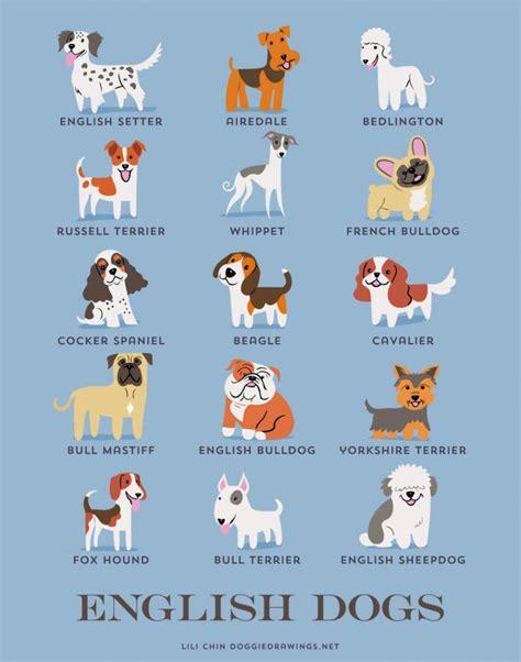 cu 225 les son los or 237 genes de las razas de perro marcianos
