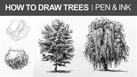 how to draw tree pictures how to draw trees with pen and ink