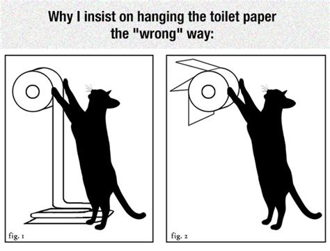 Toilet Paper Backwards by Toilet Paper When You Have A Cat The Meta Picture