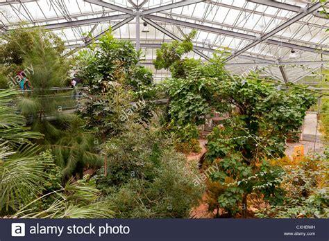 amsterdam botanical garden botanical gardens amsterdam hortus botanicus botanical
