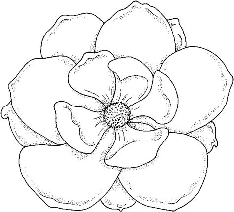 coloring book pictures of flowers coloring pages flower coloring pages