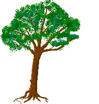 tree gifs animated animated tress clipart best