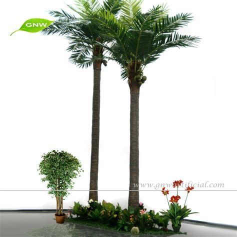 best price for trees prices for trees 28 images best price trees