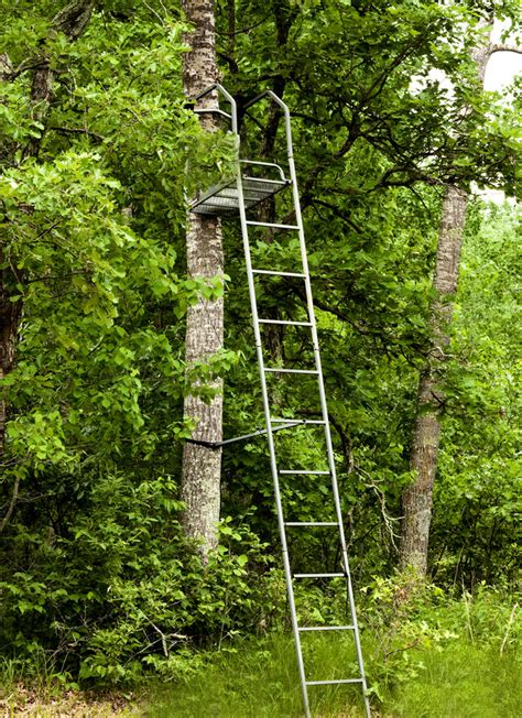 the best tree stand reviews of the best tree stands in the usa