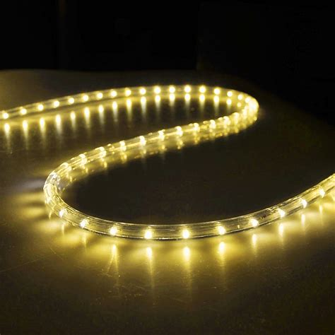 outdoor led rope lights 150 led rope light 110v 2 wire home