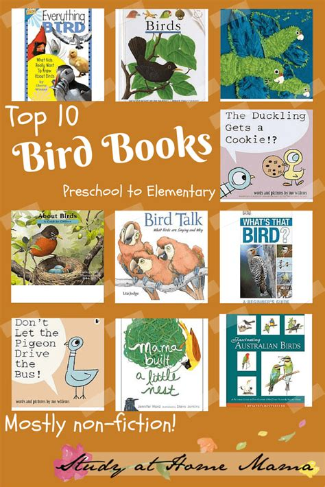 bird picture books top ten bird books for montessori preschoolers study at