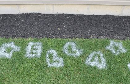spray paint yard pin grass painting on