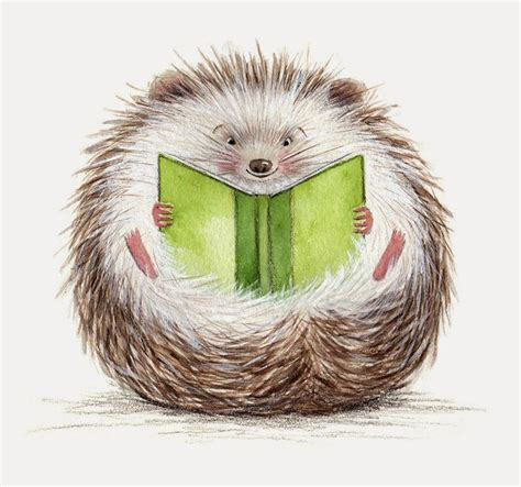 hedgehog picture book 25 best ideas about hedgehog drawing on