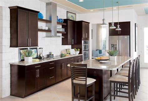 Kitchen Organization Ideas Budget kitchen kitchen colors with dark brown cabinets