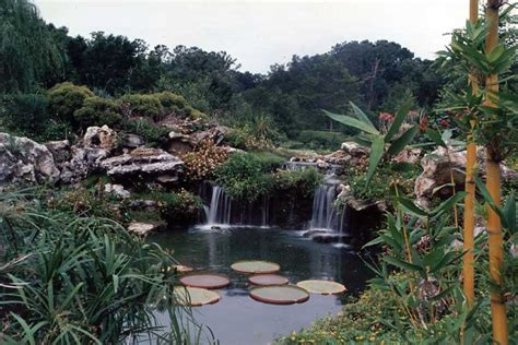 Botanical Gardens Gainesville by Related Keywords Amp Suggestions For Kanapaha